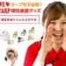 【楽天】バッグ・小物・ブランド雑貨売れ筋ランキングベスト10!【2018年6月19日】