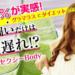 【楽天】ダイエット・健康売れ筋ランキングベスト10!【2018年4月21日】